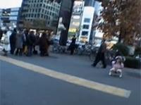 Asia Girl pisst öffentlich mitten auf der Straße