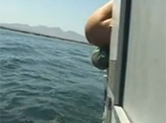 Schlampen pissen vom Boot