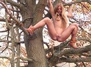 Outdoor pissen vom Baum